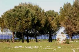 Photovoltaic park Scorrano
